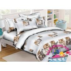 Детское постельное белье 3Д для девочки Котята